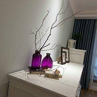 新房装修除味植物有哪些?