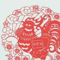 上海美尚装饰