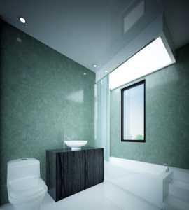 创意绿色,创意卫生间