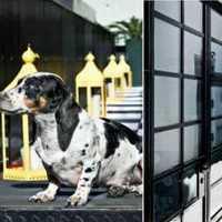 上海建筑装饰设计院有哪些呢