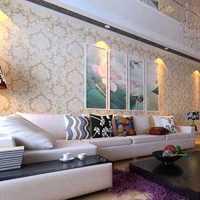 雅邦精装饰100平方大件硬家具是什么样的