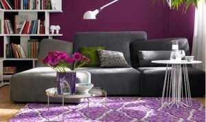 大气紫色 时尚大气客厅