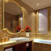 复式卫浴间豪华型其他装修效果图
