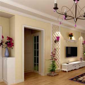 客厅木质装修