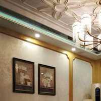 富裕型简洁二居室装修效果图