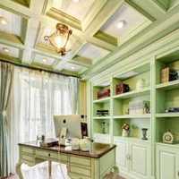 家居两室一厅装修效果图