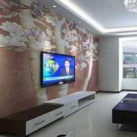 客厅地毯经济型灯具装修效果图