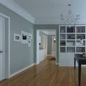 一房两厅60平米装修效果图