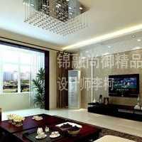 上海梧桐樹裝飾