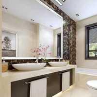 1米1宽2米8长的卫生间该如何装修