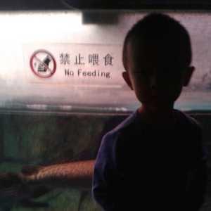 北京卧室主卧室主卧室