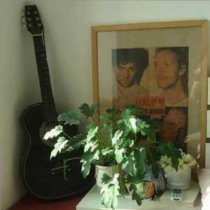 哈爾濱40平米1居室毛坯房裝修要多少錢
