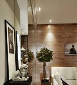 客厅与邻居共用一堵墙