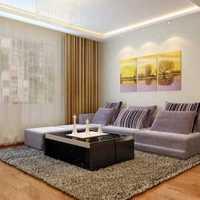 大家好我家裝修是以白黑為主的顏色我想問下客廳